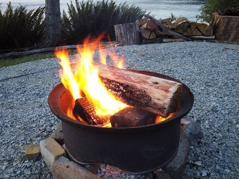Fire pit at Sproat Lake